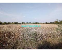 1 Acre 20 Gunta Farm Land Sale at Talakondapally,Mucharla Pharmacity