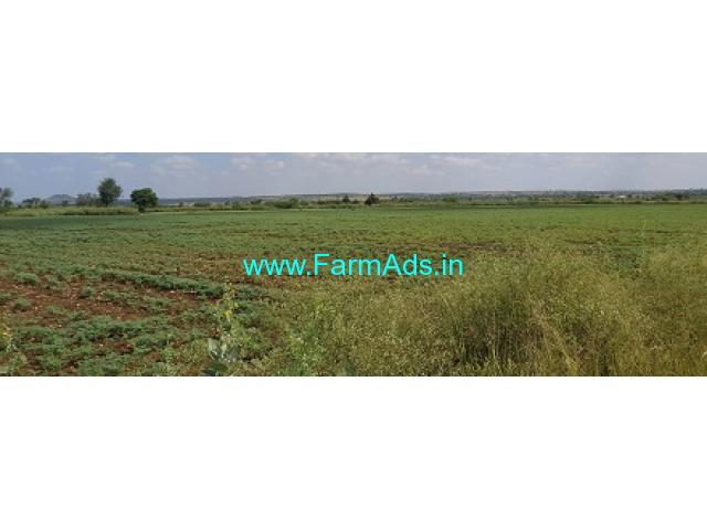 9 Acres Agriculture Land for Sale near Chitradurga