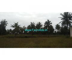 8 Acres Coconut Farm for sale at Chiknayakanahalli, Tumkur District