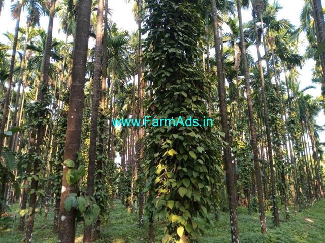 Agriculture Land for sale 6 acres land , in Karkala, 7 km from Ajekar,