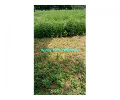 13 Acres Agriculture Land for Sale near Chittoor