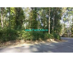 1.5 acre coffee estate for sale In Chikkamgaluru