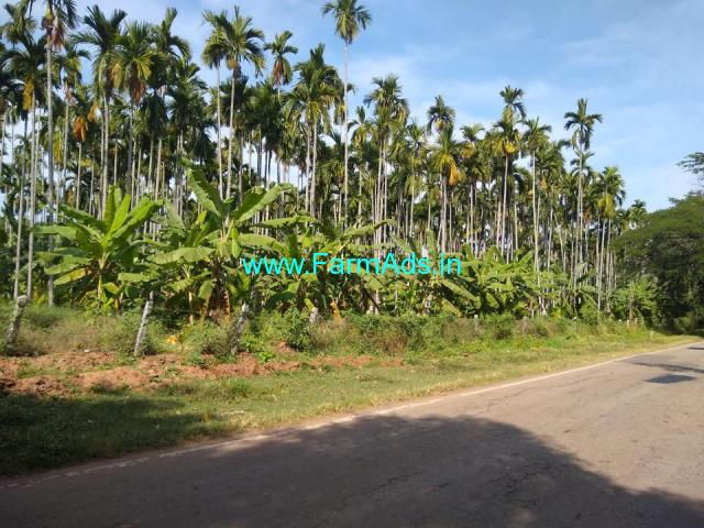 3 acre arecanut plantation for sale In Chikkamgaluru, Tarikere Road