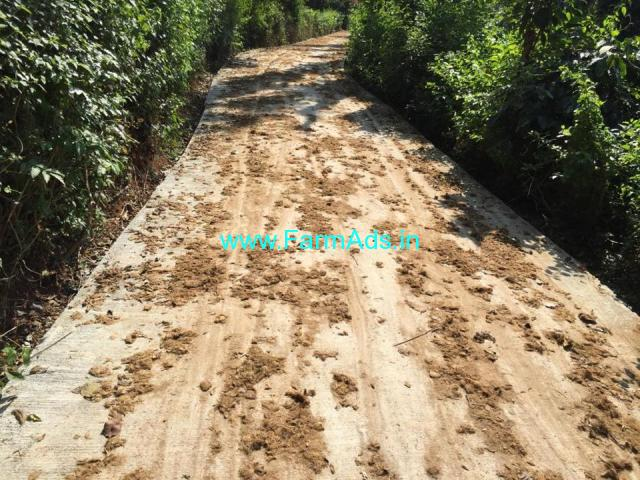 4.26 acre coffee estate for sale in Mudigere 10 km from city