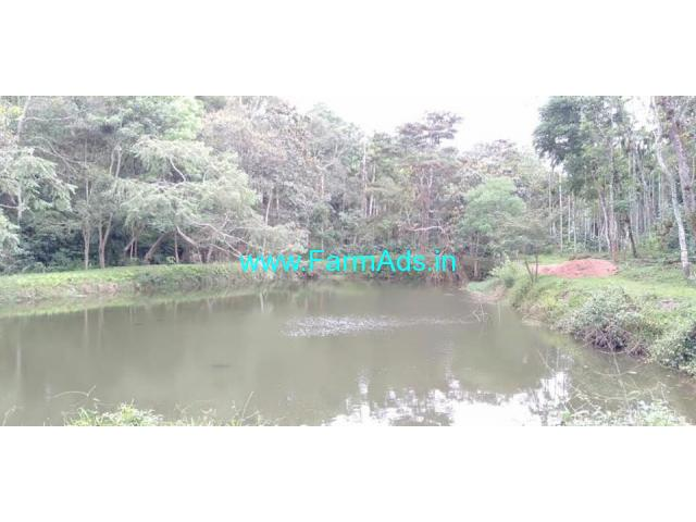 62 acres Coffee Estate for sale at Chikmagalur to Mudigere Road.