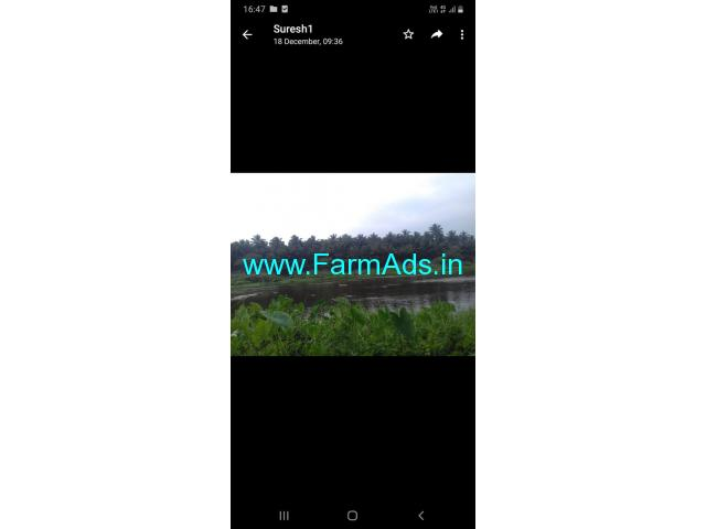 Coconut farm of 8 acres with river bed for sale