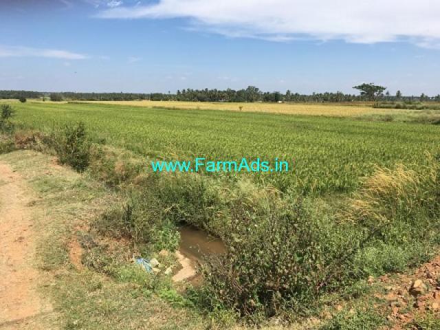 2 Acres Agriculture Land for Sale near Vidyanagar