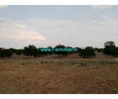 10.33 Acres Irrigated Farm Land for Sale near Anantpur
