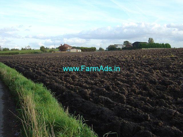 2.67 Acres Farm Land for Sale near Ongole,Sagar Canal