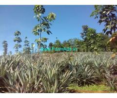 4 Acres Agriculture Land Sale near Thrissur