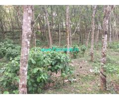 45 Cents Rubber Estate for Sale near Kottayam