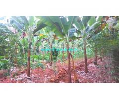 25 Cents Agriculture Land for Sale near Kollam