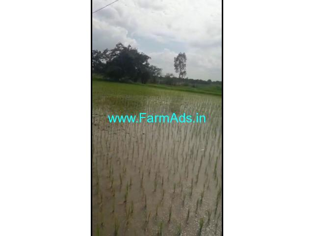2 Acres Agriculture Land for Sale near Andole,Nandhed Highway