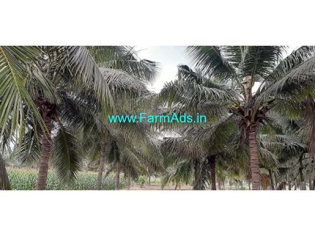 1.50 Acres Coconut Farm Land for Sale near Gudimangalam