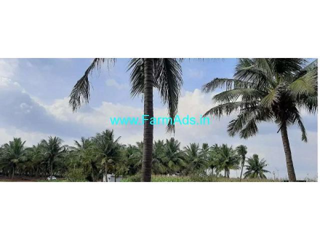 9 Acres Agriculture Land for Sale near Palladam