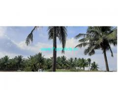 9 Acres Agriculture Land for Sale near Palladam