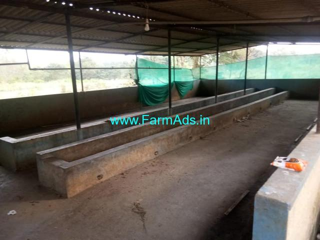Dairy farm for rent near nelmangla banglore.