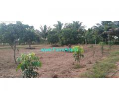 3 Acres Coconut and Mango Farm Land for sale at Tindivanam