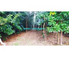 4 acre plantation for sale Towards mallenhalli in Chikkamagaluru.