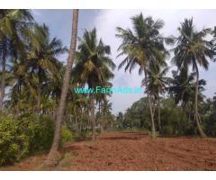 1 Acre Coconut Farm for sale at Hullahalli - Nanjangud