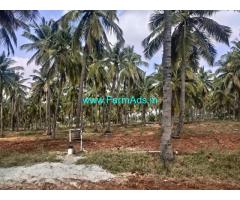 3 acres Yeilding coconut Farm with bore well for sale near Hiriyur, Maskal.