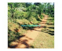 2 Acres Agriculture Land for Sale near Mudigere,Belur Road