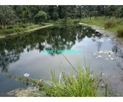 48 Acres Coffee Estate for Sale in Hassan