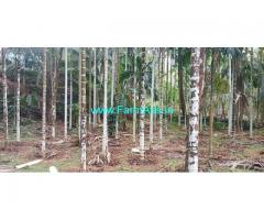 5.5 Acres Areca nut Farm Land for Sale near Kasargod