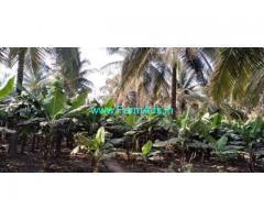5 Acre Coconut Farm For Sale in Bogadhi Gaddige Road