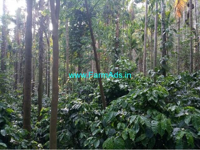 5 Acres Coffee Estate for Sale near Aldur