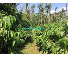 8 Acre Coffee Estate for Sale near Mudigere,Mudigere Bankal Road