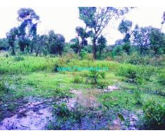 3.13 Acres Agriculture Land for Sale near Sringeri,Thirthalli Highway