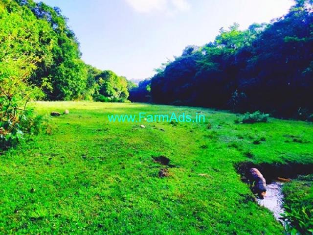6.50 Acres Agriculture Land for Sale near Sakleshpur
