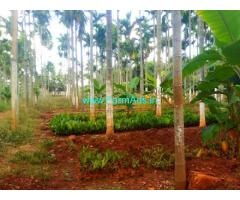 15 Acres Arecanut Farm Land for Sale near Kadur