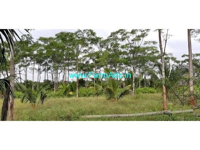 Well maintained 14 Acres Coconut Farm for Sale at Nanjangud Road