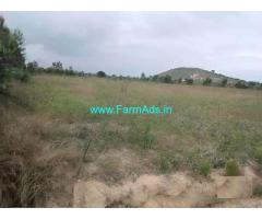 22 Acres Plain Agriculture Land for Sale near Punganur