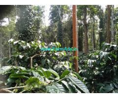 10 Acres Coffee Estate for Sale near Belur
