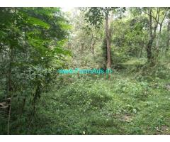8 Acres Neglected Coffee Estate for Sale near Belur