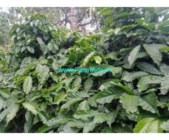 6.50 Acres Coffee Estate for Sale near Sakleshpur