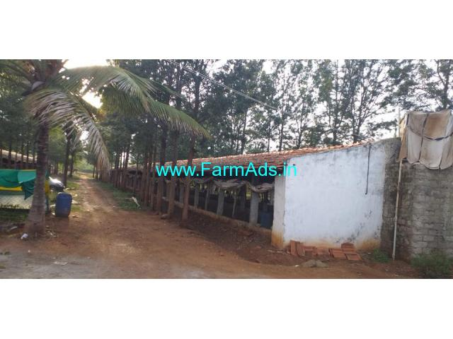 9.5 Acres Mango,coconut Farm with Poultry Farm for Sale in Chikmagalur