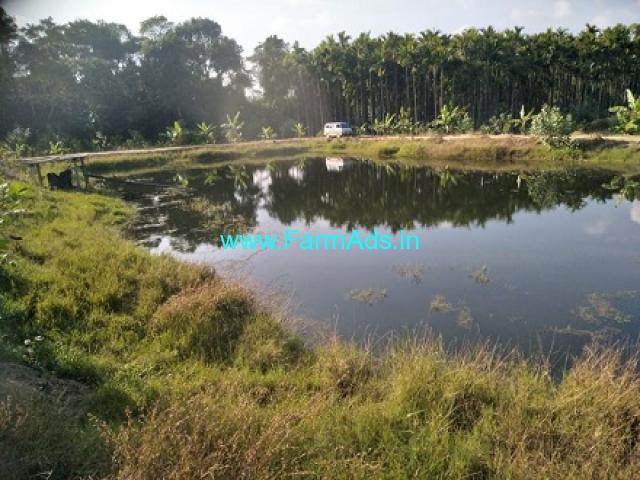 3 Acres 7 Gunta Agriculture Land for Sale in Mudigere