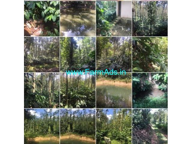 4 Acres Coffee Estate for Sale at Mudigere