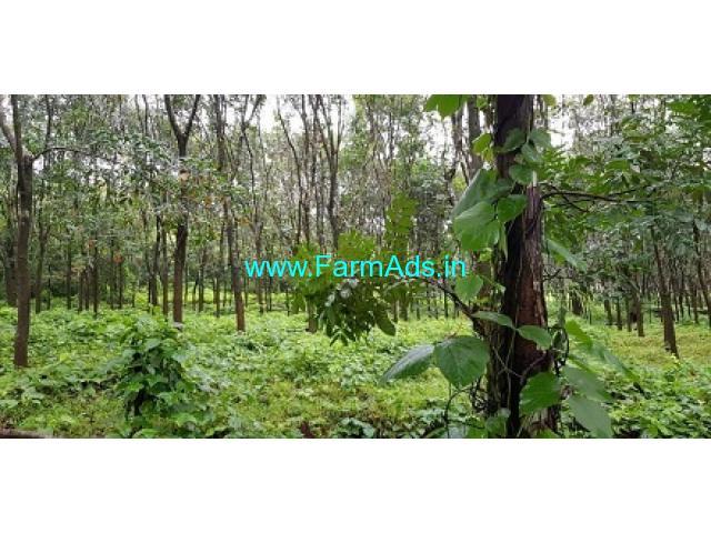 16 Acres Agriculture Land for Sale near Ajekar
