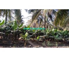5 Acre Coconut Farm For Sale in Bogadhi-Gaddige Route, 28 KMS to Ring road