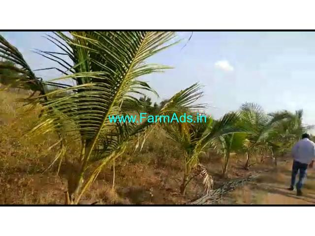 10 Acres Agriculture Land for Sale near Mallareddypet