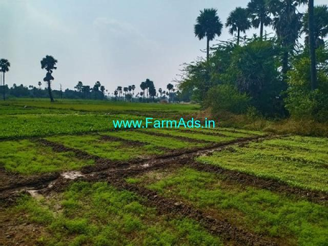 3 Acres Agriculture Land for Sale at Adibatla