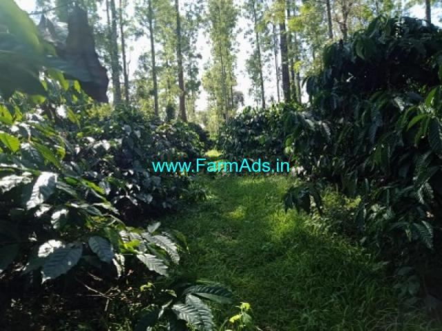 10 acre coffee estate for sale In Mudigere