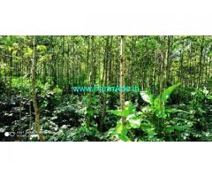 23 Gunta Coffee Estate for Sale in Chikmagalur towards Aladgudde