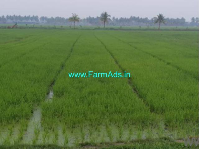 6.87 Acres Agriculture Land for Sale near Visakhapatnam