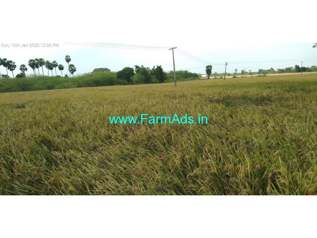 8 Acres Agriculture Land for sale in Thanjavur vai Tiruvarur In Ammapettai
